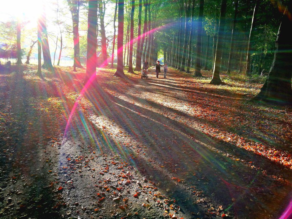 orb, spiritualiteit, energie, trilling aarde, lichtwezens