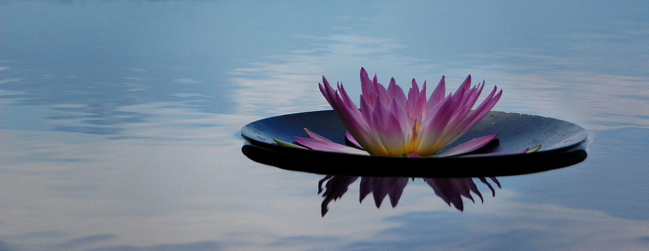 meditatie